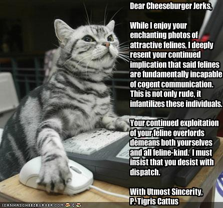 funny-pictures-a-letter-from-a-very-intelligent-cat