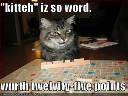 funny-pictures-cat-argues-about-scrabble