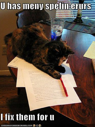funny-pictures-cat-proofreads-your-essays