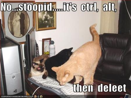 funny-pictures-cats-try-to-restart-computer